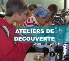 Ateliers_decouverte3