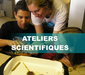 Ateliers_scientifiques3
