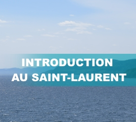 Intro_St-Laurent3